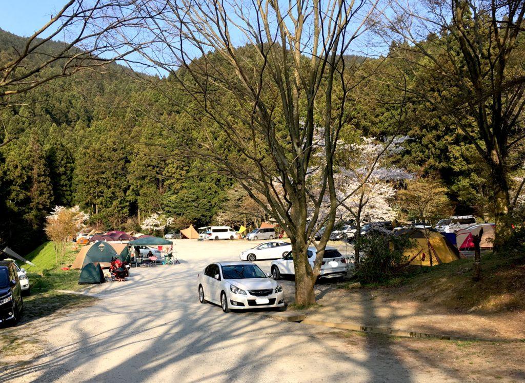 いつも賑やかな若杉楽園キャンプ場